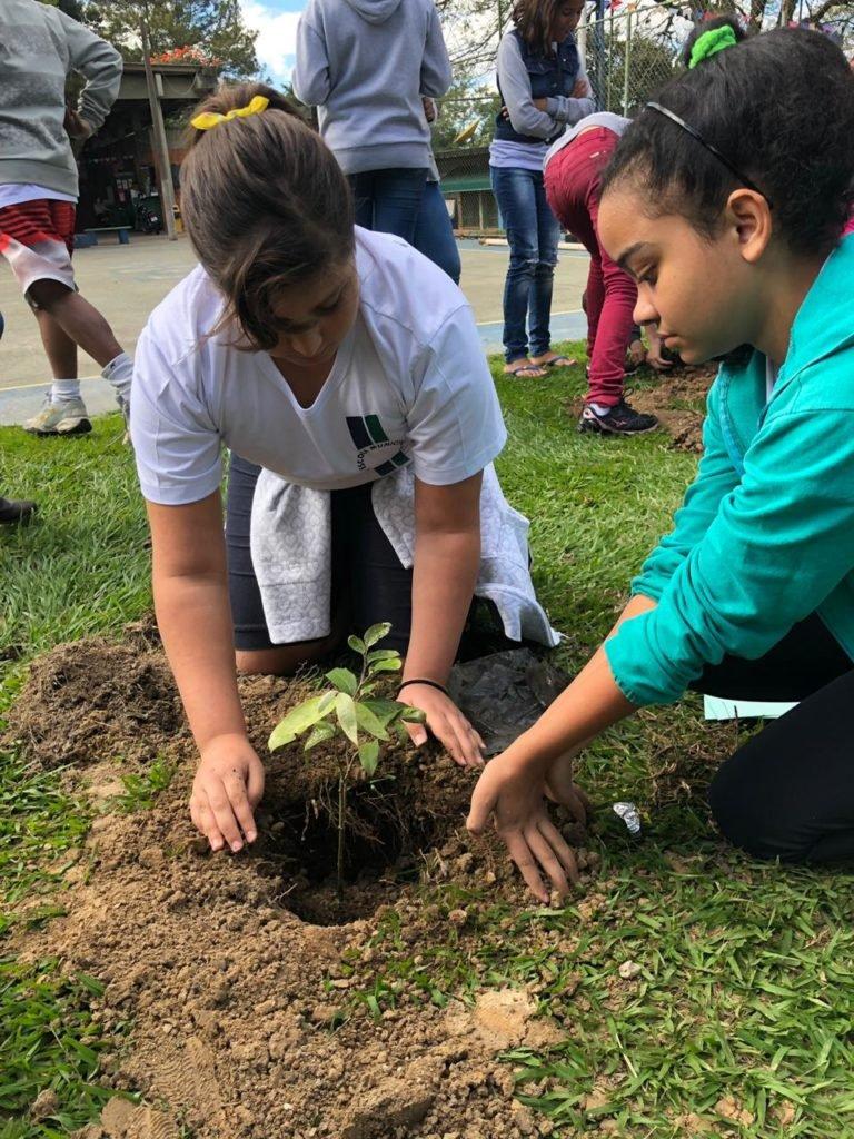 Semana do Meio Ambiente foi celebrada em Capivari com atividades educativas